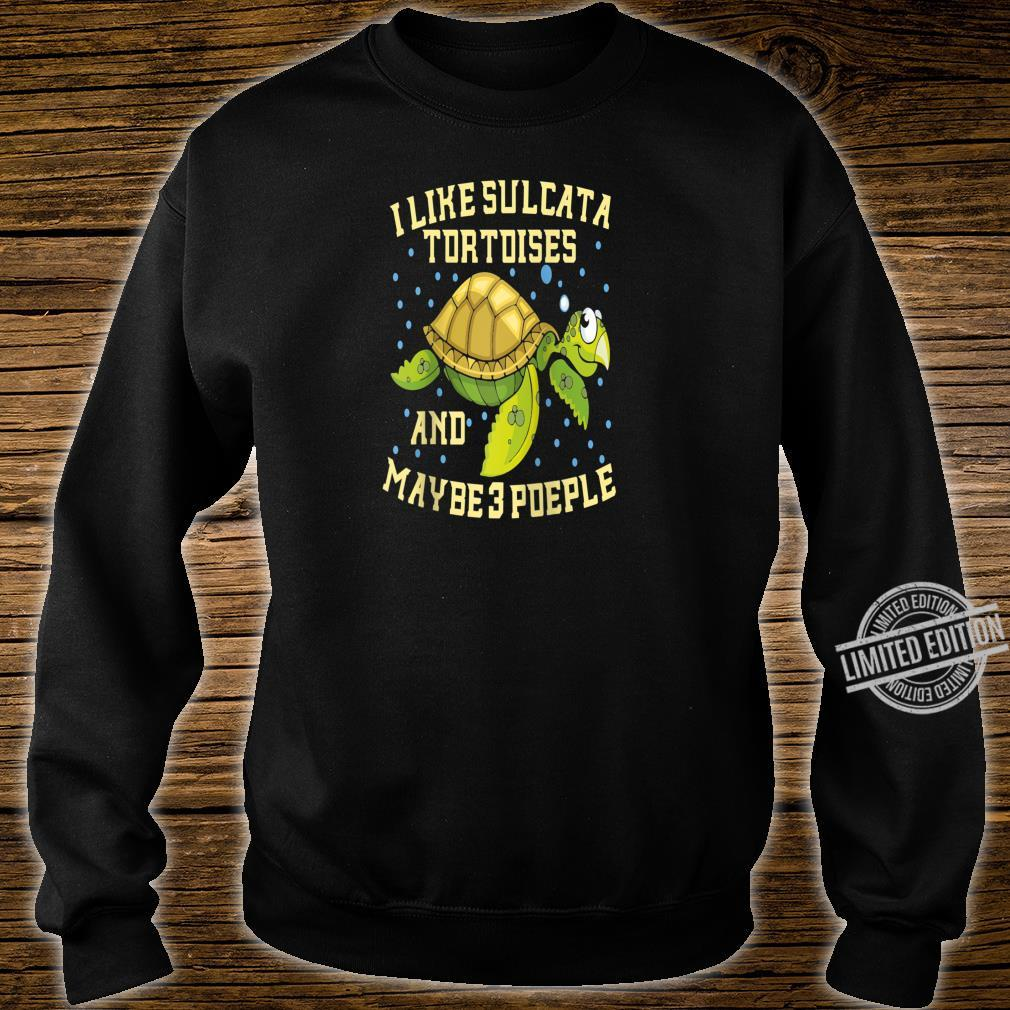 I Like Sulcata Tortoises And Maybe 3 People Turtle Owner Shirt sweater